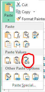 MS Excel paste options