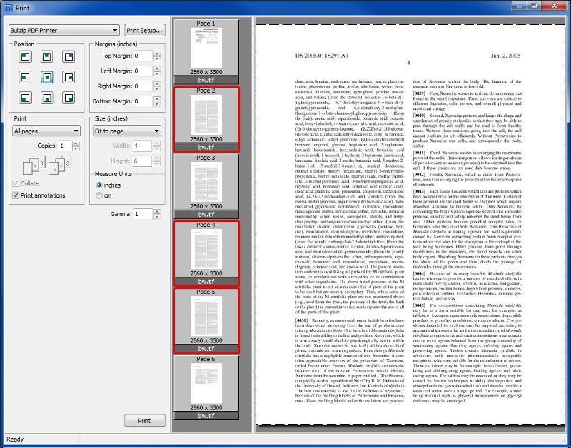 Print selected pages via thumbnails