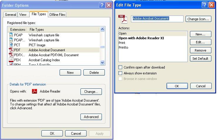 PDF file type info