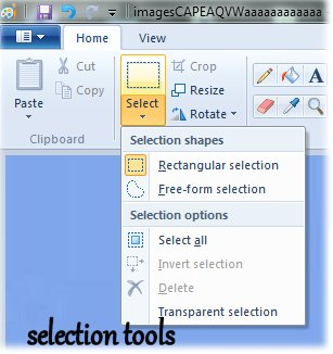Paint selection tools
