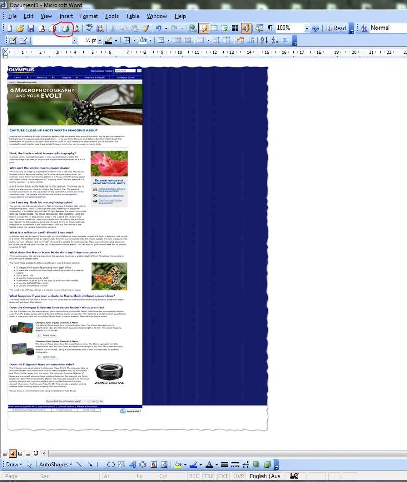 print full web page example