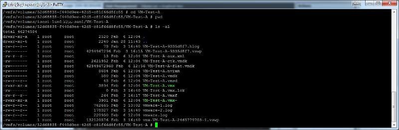 VM Folder Path