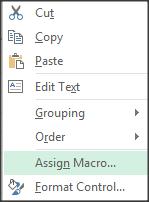 assign macro