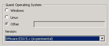 ESXi expermental