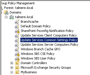 SBS 2011 Group policy
