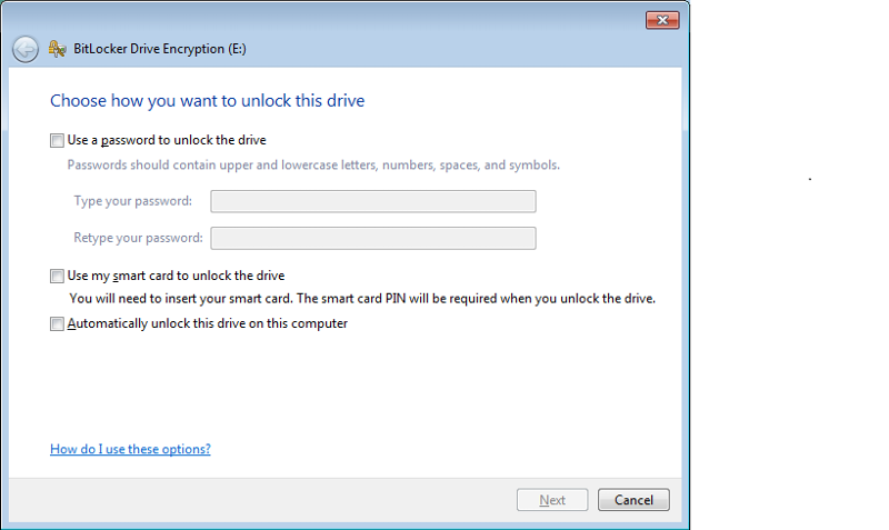 BitLocker Option