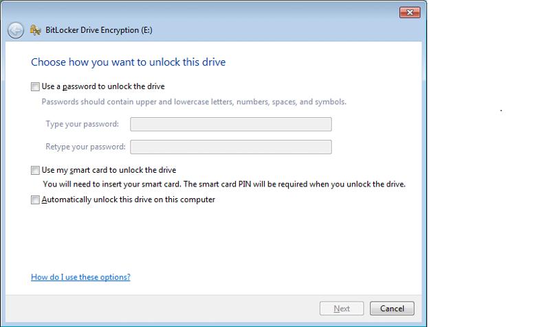 BitLocker Option