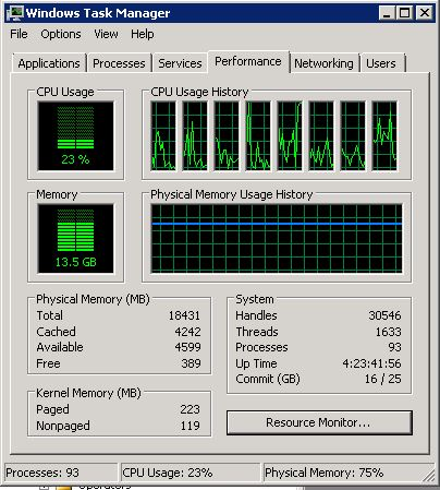 Windows Task Manager (Performance)