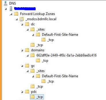 dns manager tree structure