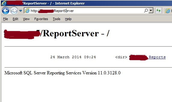 SSRS reportserver screen shot