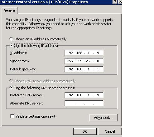 SBS2011 DNS Server Setting