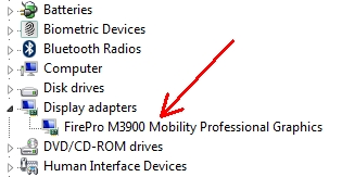 Device Manager - Display adapters