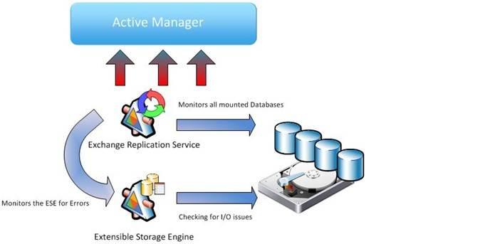 Exchange Active Manager