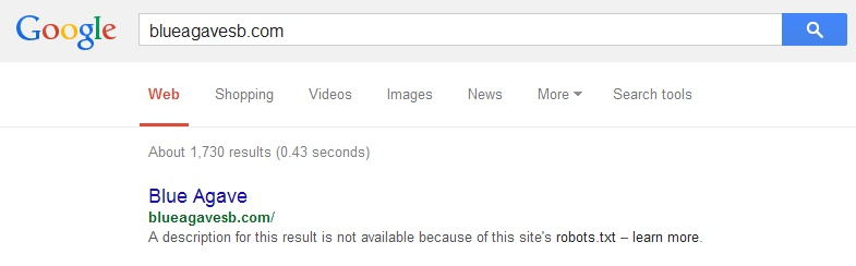 Google blueagavesb