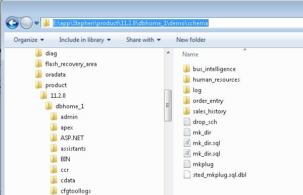 demo\schema folder