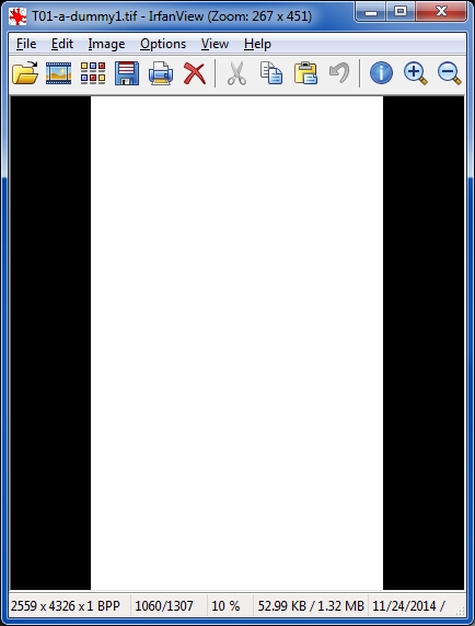 IrfanView shows page as blank
