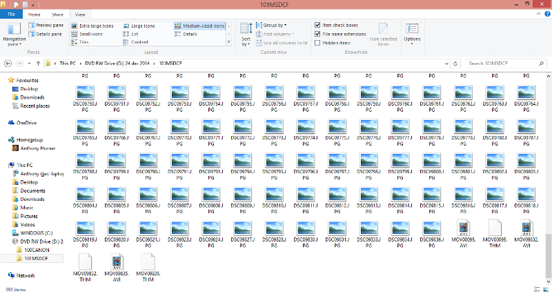 sony folder contents