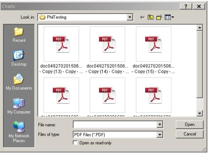 Broken PDF Preview on the citrix server