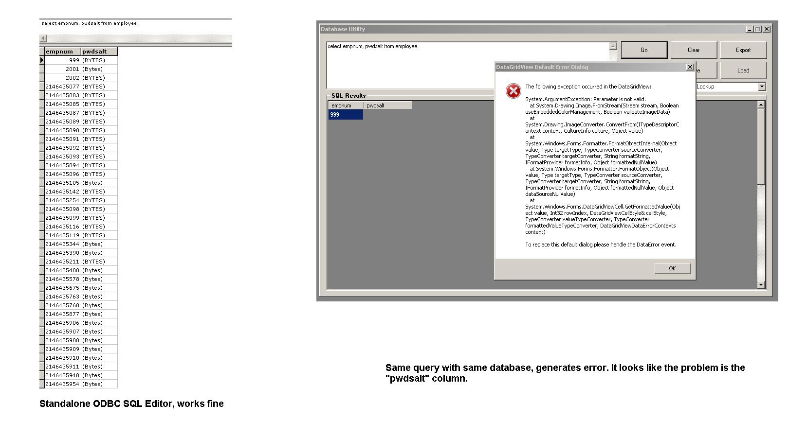 VB net DataGridView Error