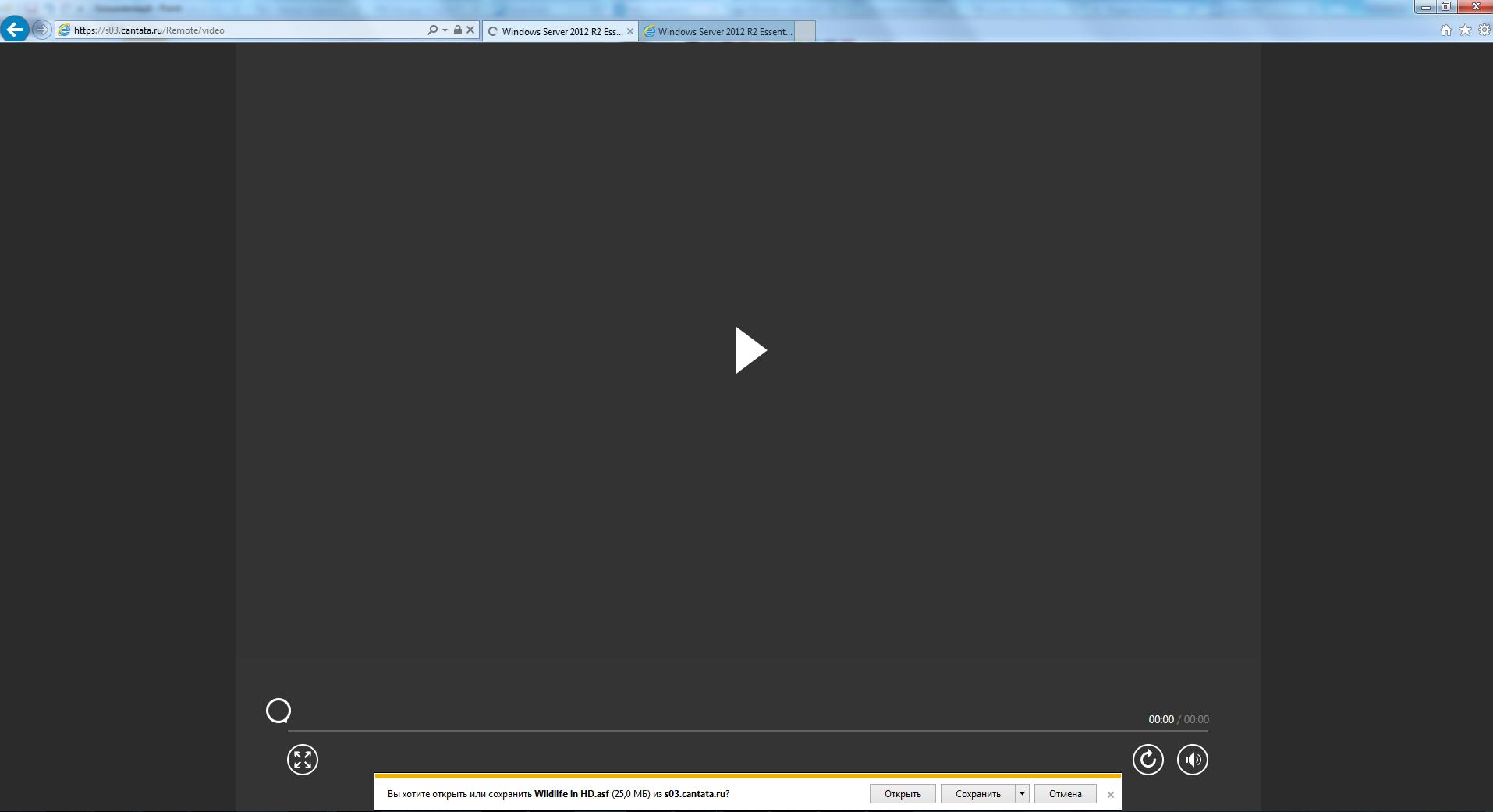 Windows Server Essentials Media Pack streaming video not working