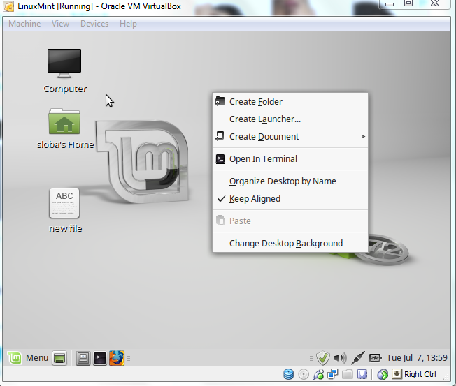 Unknown Display problem in Linux Mint