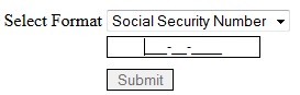 social security masking applied to textbox