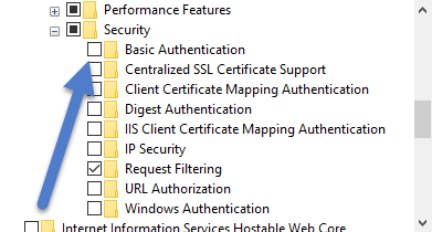 iis security features