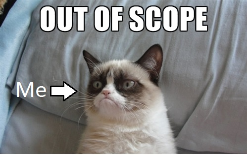grumpy-cat-out-of-scope.jpg