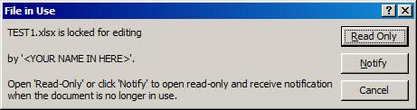 MS-Excel 2007 - File in Use.jpg