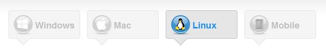 TeamViewer OS choice
