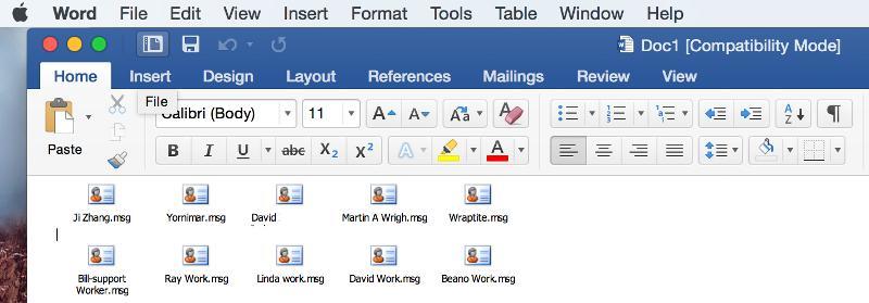 Screenshot of what the file looks like.