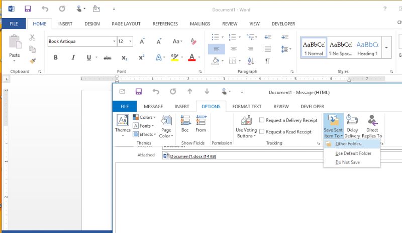 Option menu in Outlook 2013.