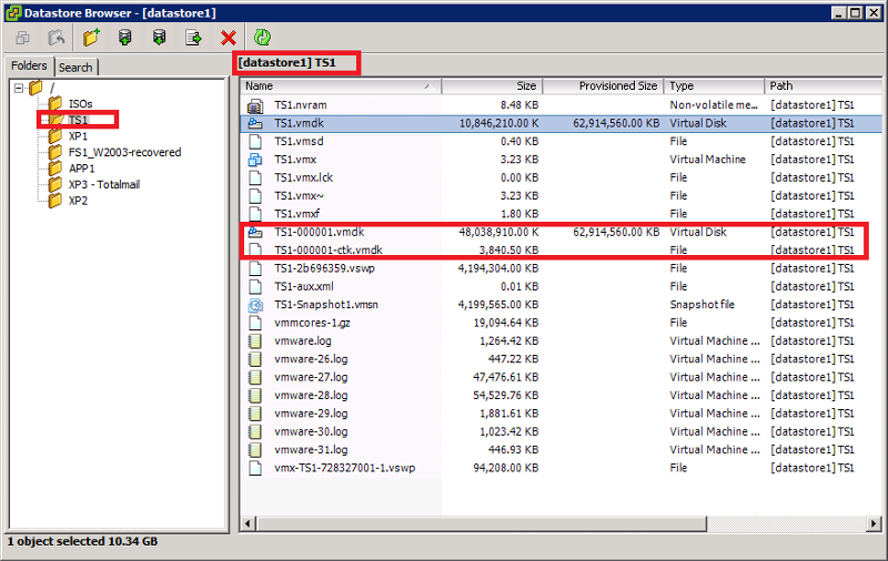 vmdk Snap File in Datastore