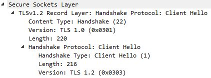 TLS client hello packet