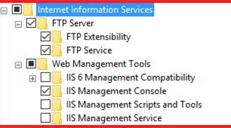 IIS/FTP Install