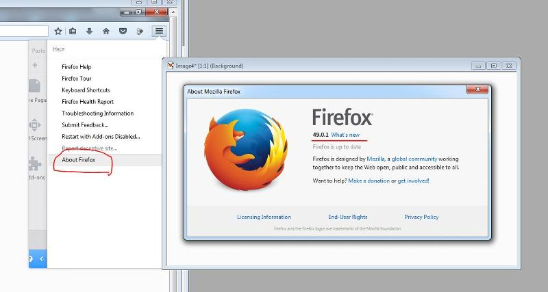Firefox version 49