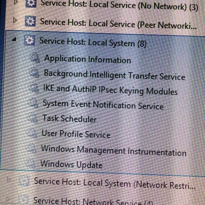 """""""Service Host: Local System"""" processes"""