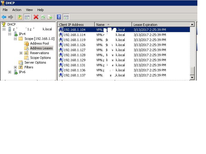 RRAS computer has too many IP addresses