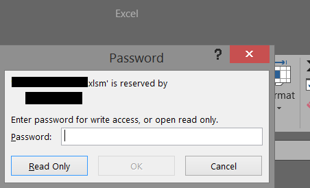 excel read only access