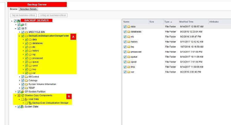 Backup Server folder selection