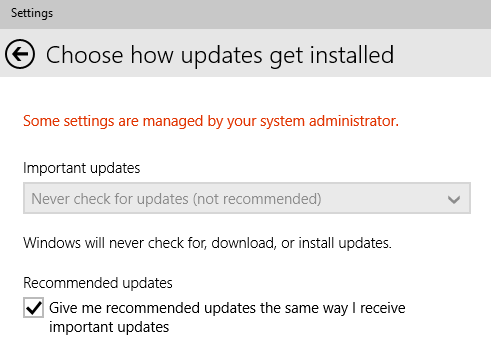 never-check-auto-updates.png