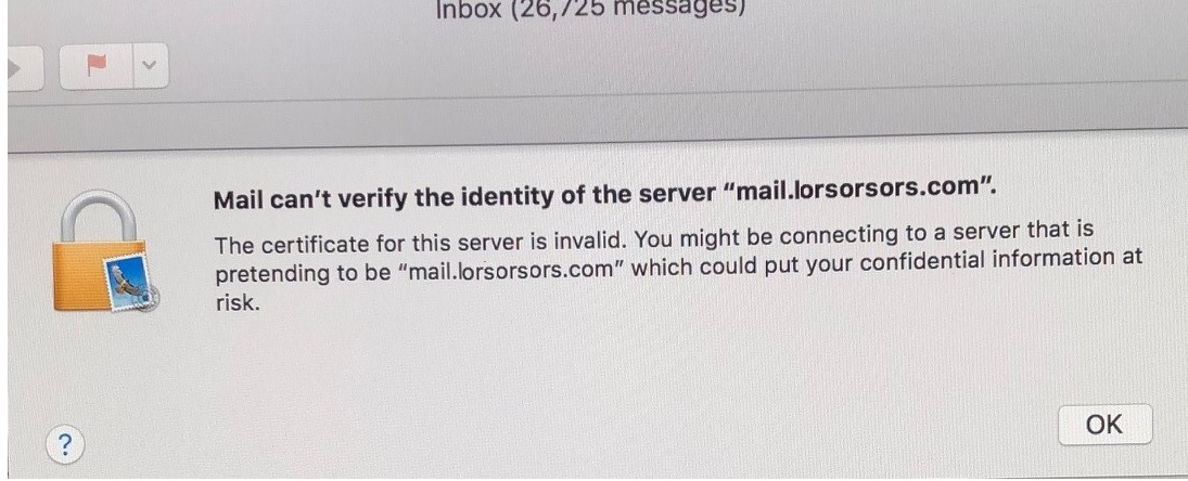 The Certificate For This Server Is Invalid