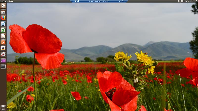 Ubuntu-16.04-on-CHAMPS-LAPTOP---Virt.png