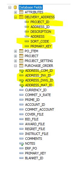 Snapshot of the two tables Delivery Address and Purchase Order (highlighted are the fields.