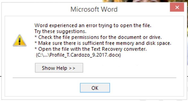 Microsoft Word error message