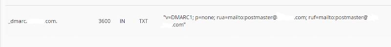 DMARC-TXT-Record
