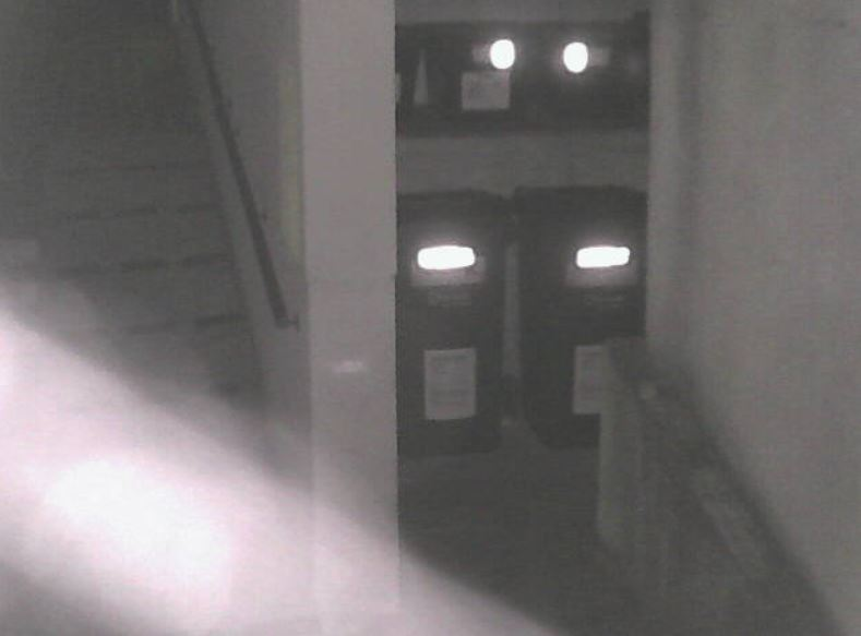example ip camera image