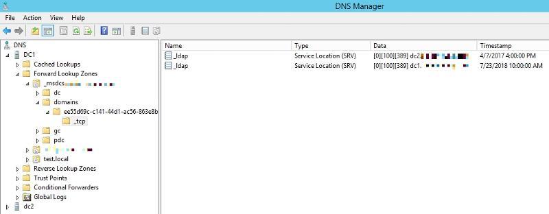 DNS Manager screenshot