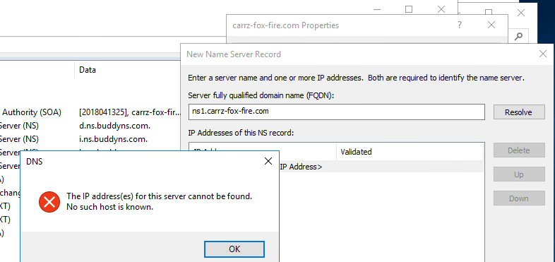 NS Record - The IP Address for this server cannot be found.