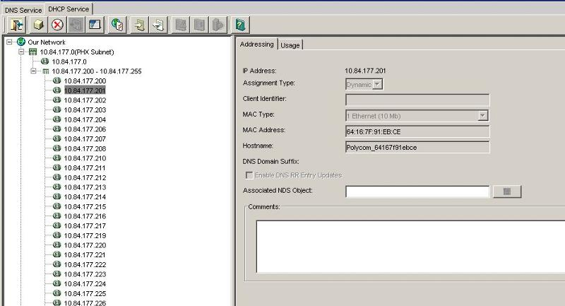 Screen shot of DHCP app